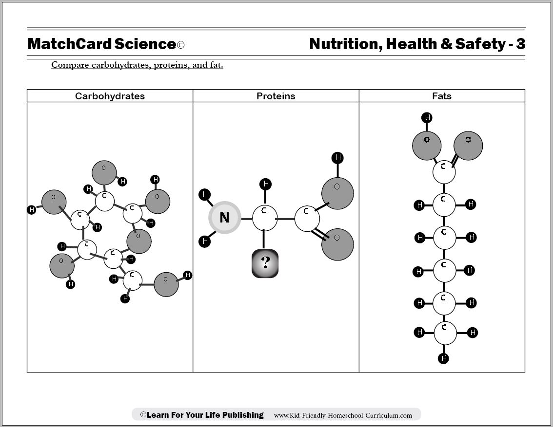 an experiment to determine the relations of students consumption of carbohydrates protein or fats an Given that the shift toward more carbohydrates has been associated with an overall increase in energy intake and an increase in obesity prevalence, dietary interventions to combat the obesity epidemic should focus on reducing total energy intake, perhaps by substituting protein intake in place of both carbohydrate and fat intake.