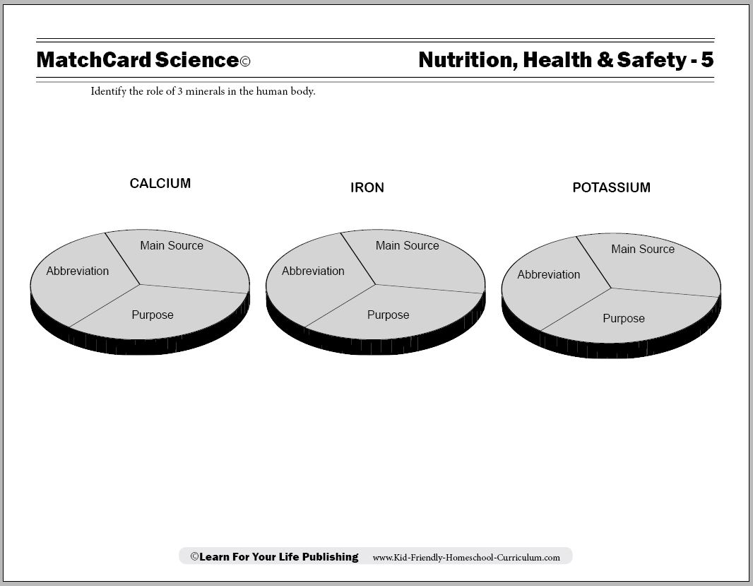 Nutrition Mineral Worksheet