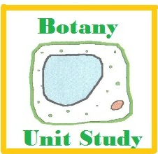 Botany Unit Study Cover