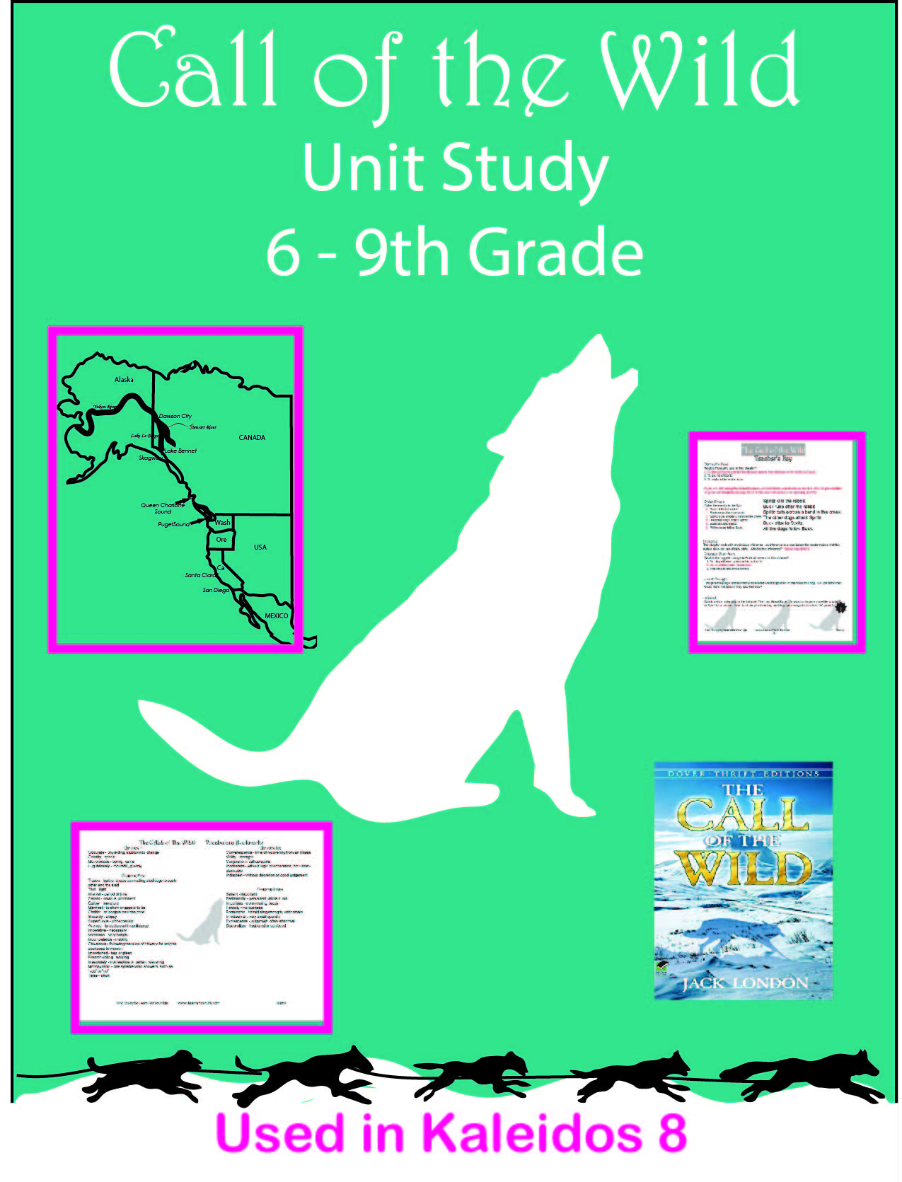 Call of the Wild Unit Study Poster