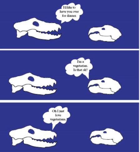 Carnivore Skull and Herbivore Skull