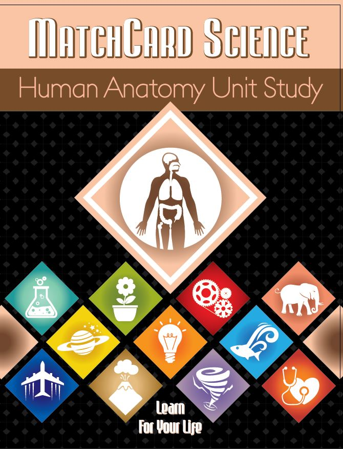 Human Anatomy Unit Study Cover
