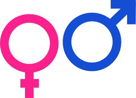 colored gender symbol