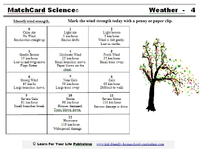 Beaufort Scale Worksheet