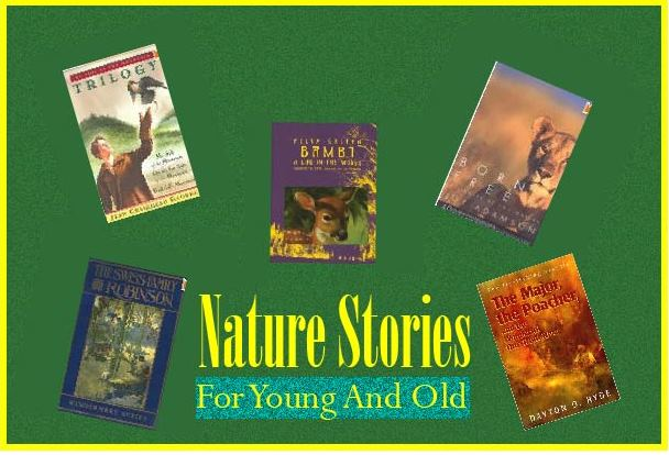 poster of nature stories
