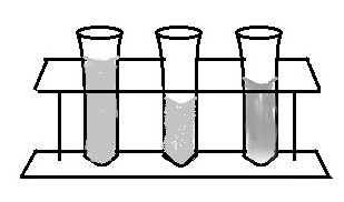 Diagram of Test Tube Rack