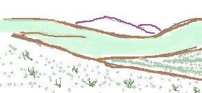 grassland diagram
