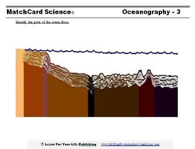 Diagram of the ocean floor for Ocean floor features definition