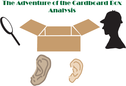 Adventure of the Cardboard Box Analysis
